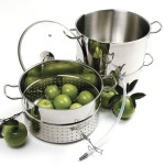 Norpro stainless steel steamer juicer insert with fruits